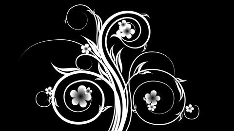 beautiful animated black and white patterns for mo Animation