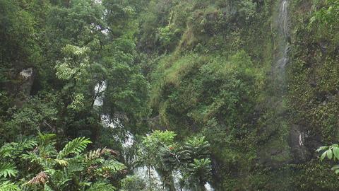 Upper Waikani Falls, Maui Hawaii Tilt Down stock footage