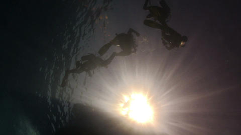 Divers Preparing to Dive Footage