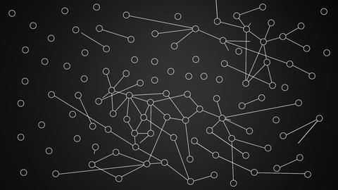 Network Connections v1 05 Animation