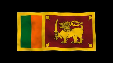 National Flag A65b SRI Sri Lanka Stock Video Footage