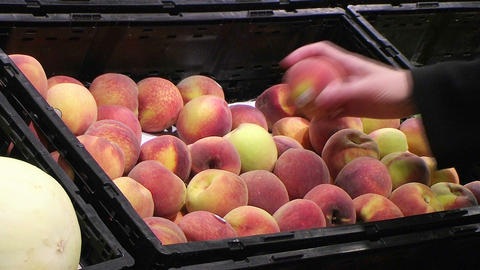 Woman Selecting Peaches In Produce Footage