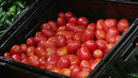 Woman Selecting Tomatoes In Produce Stock Video Footage
