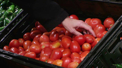 Woman Selecting Tomatoes In Produce Footage