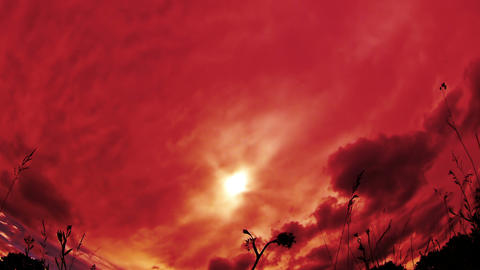 Red Clouds Flying Over The Meadow stock footage