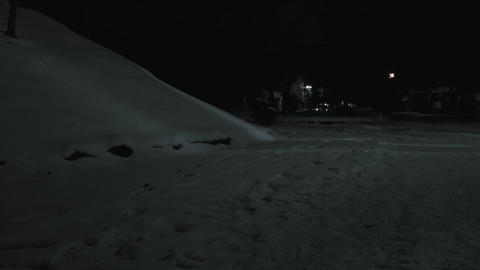 Winter night at the park 12 Footage