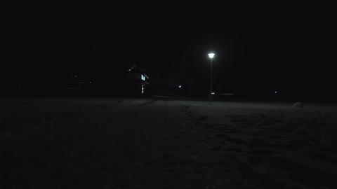 Winter Night At The Park 01 stock footage