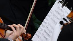Concert of violins viola and violoncello Footage