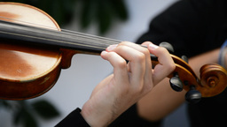 Musician playing violin on a concert in close up Footage