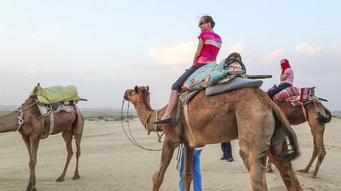 Camel Tour stock footage