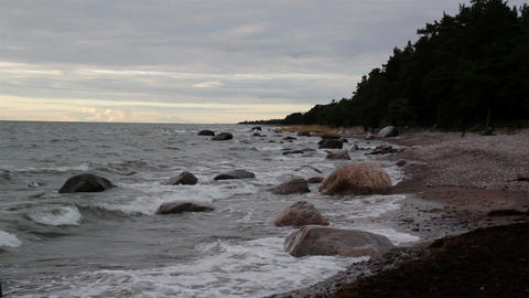 Rocks on the shoreline and the forest at the side Footage