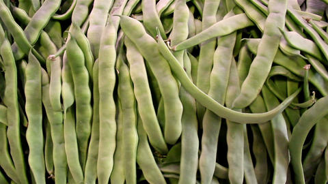 Lots of ecological green beans in pile Footage