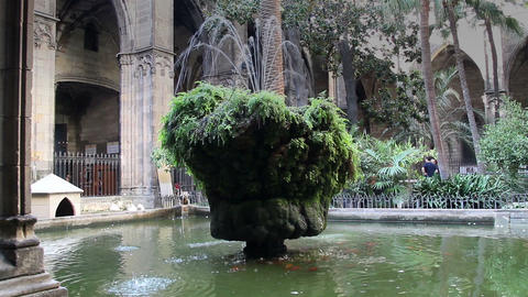 Old mossy fountain in the middle of a church park Footage
