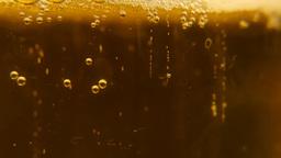 Beer Sampler 1 0