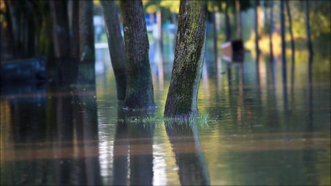 Flooded alley in the city Footage