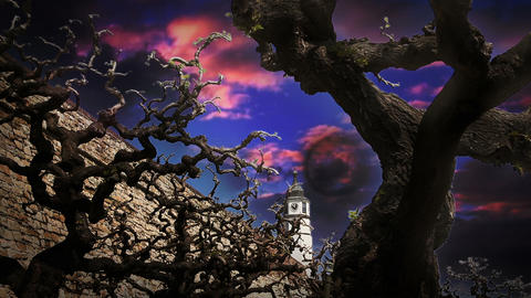 scary looking tree branches with purple sky added  Live Action