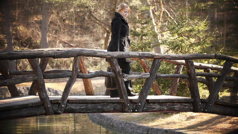 Bridge Footage