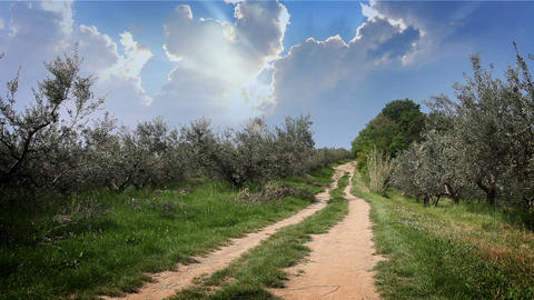 Road On A Beautifull Sunny Day stock footage