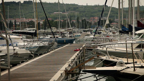 Boats moored in harbor Live Action