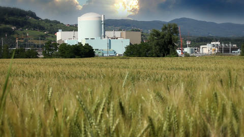 grain field with factory in the back Live Action