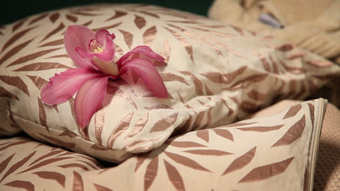 pillow with flower on it Live Action
