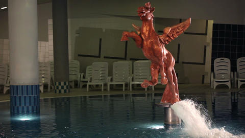 statue of the horse in the swimming pool Footage