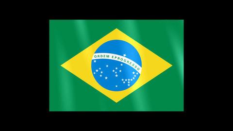 National Flags 4 BRA Brazil Stock Video Footage
