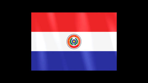 National Flags 4 PRY Paraguay Stock Video Footage