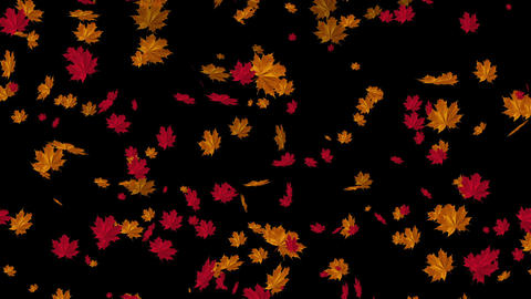 Falling Leaves Ultimate Collection 2