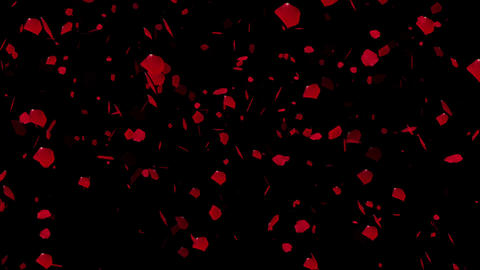 Rose Petals 02 Stock Video Footage