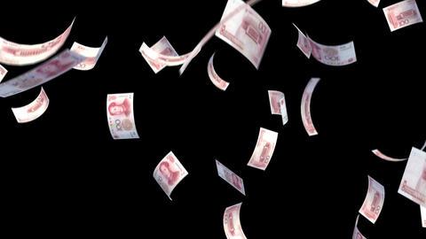 Money RMB L bm with alpha Animation
