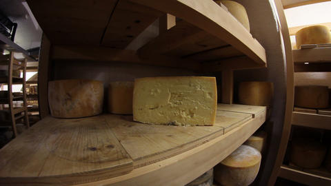 Seasoning cheese ライブ動画