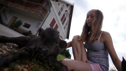 Teenage girl caressing black calf shot form below Footage
