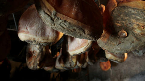 Prosciutto Producing Facility stock footage