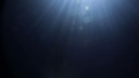 Underwater surface with small rising bubbles Footage
