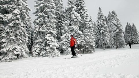Group of people skiing on idyllic winter day Footage
