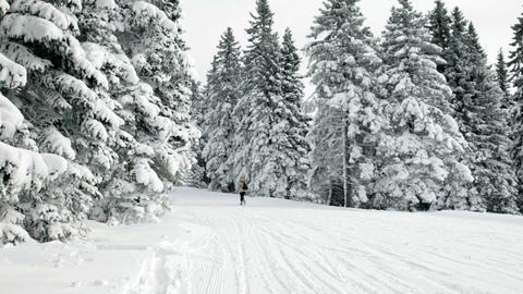 Older woman walking and enjoying in winter idyll Footage