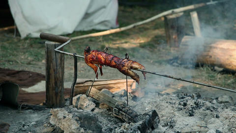 Whole rabbit roasting on barbecue in camp Footage