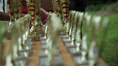 Trophy For Winners On The Table stock footage