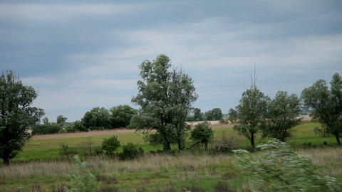 Drive through countryside with green nature landsc Footage