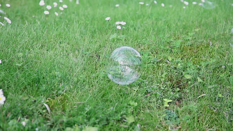 Popping soap bubbles on green lawn Footage