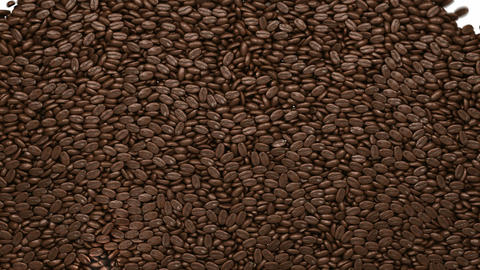 Filling the frame with roasted coffee beans Animation