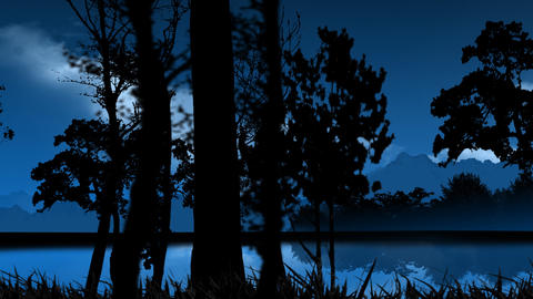 animated illustration night forest Animation