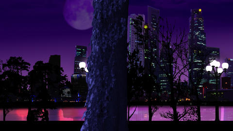 night city Stock Video Footage