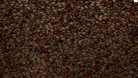 Filling the frame with unsorted coffee beans Animation