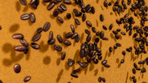 Coffee beans falling down over sacking background with... Stock Video Footage