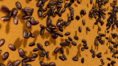 Coffee beans falling down over sacking background with slow motion Animation