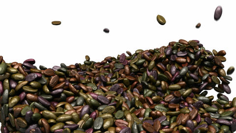 Unsorted Coffee beans mixing and tossing up with slow motion Stock Video Footage