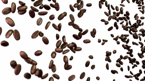 Coffee beans falling down with slow motion over white Animation