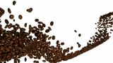 Coffee Beans Flow With Slow Motion Over White stock footage